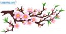 Viết đoạn văn tả cảnh đẹp mùa xuân quê em