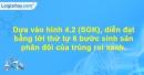 Mục I,II, ghi nhớ trang 13, 14 Vở bài tập Sinh học 7
