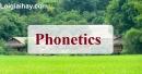 Phonetics - Trang 11 Unit 2 VBT tiếng anh 8 mới