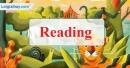 Reading - Trang 52 Unit 6 VBT Tiếng Anh 8 mới