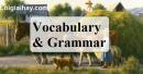 Vocabulary & Grammar - Trang 12 Unit 2 VBT Tiếng Anh 8 mới