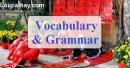 Vocabulary & Grammar - Trang 33 Unit 4 VBT Tiếng Anh 8 mới