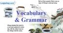 Vocabulary & Grammar - Trang 50 Unit 6 VBT Tiếng Anh 8 mới