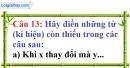 Phần câu hỏi bài 5 trang 65 Vở bài tập toán 7 tập 1