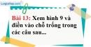 Bài 13 trang 92 Vở bài tập toán 7 tập 1
