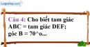 Phần câu hỏi bài 2 trang 114 Vở bài tập toán 7 tập 1