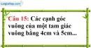 Phần câu hỏi bài 7 trang 134 Vở bài tập toán 7 tập 1