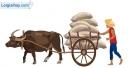 Viết đoạn văn tả con trâu, vật nuôi của nhà nông