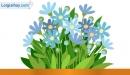 Viết đoạn văn tả một loài hoa quý