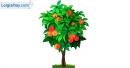 Viết đoạn văn tả cây cam