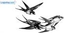 Viết đoạn văn tả chim én