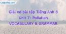 Vocabulary & Grammar - Unit 7 VBT Tiếng Anh 8 mới