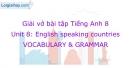 Vocabulary & Grammar - Unit 8 VBT Tiếng Anh 8 mới
