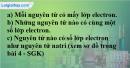 Bài 4.4 trang 5 SBT hóa học 8