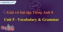 Vocabulary & Grammar - Trang 42 Unit 5 VBT Tiếng Anh 8 mới