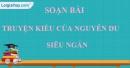 Soạn bài Truyện Kiều của Nguyễn Du siêu ngắn