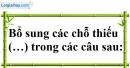 Bài 11 trang 68 SBT toán 6 tập 1