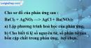 Bài 16.5 trang 22 SBT hóa học 8