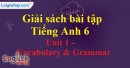Vocabulary and Grammar - Unit 1 SBT tiếng Anh lớp 6 mới