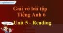 Reading - trang 36 Unit 5 Sách Bài Tập (SBT) tiếng Anh lớp 6 mới