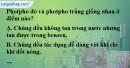 Bài 10.1, 10.2 trang 16 SBT hóa học 11
