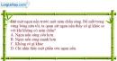 Bài 3.10 trang 10 SBT Vật lí 7