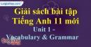 Vocabulary & Grammar - trang 5 Unit 1 SBT Tiếng anh 11 mới