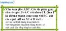 Bài 17 trang 81 SBT toán 8 tập 1