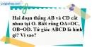 Bài 29 trang 83 SBT toán 8 tập 1