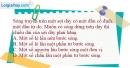 Bài 9.8, 9.9, 9.10 trang 25 SBT Vật Lí 12