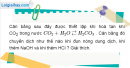 Bài 19.7 trang 27 SBT hóa học 11