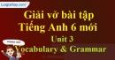 Vocabulary & Grammar - Unit 3 VBT tiếng anh 6 mới