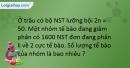 Bài 26,27,28,29,30 SBT Sinh học 9 trang 31