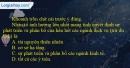 Câu 1 trang 34 SBT địa 9