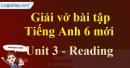 Reading - Unit 3 VBT tiếng anh 6 mới