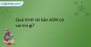 Bài 26, 27, 28, 29, 30 trang 44 SBT sinh học 9