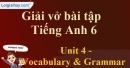 Vocabulary & Grammar - Trang 34 Unit 4 VBT tiếng anh 6 mới