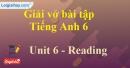 Reading - Trang 54 Unit 6 VBT tiếng anh 6 mới