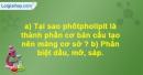 Bài 10 trang 27 SBT Sinh học 10