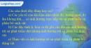 Câu 6 trang 50 SBT địa 10