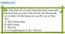Bài 20.8 trang 64 SBT Vật lí 6