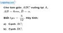 Bài 24 trang 106 SBT toán 9 tập 1