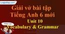 Vocabulary & Grammar - Unit 10 VBT tiếng anh 6 mới