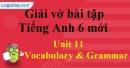 Vocabulary & Grammar - Trang 38 Unit 11 VBT tiếng anh 6 mới