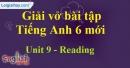 Reading - Trang 22 Unit 9 VBT tiếng anh 6 mới