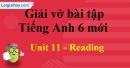 Reading - Unit 11 VBT tiếng anh 6 mới