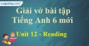 Reading -  Unit 12 VBT tiếng anh 6 mới