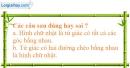 Bài 113 trang 94 SBT toán 8 tập 1