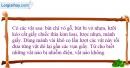 Bài 17.1 trang 36 SBT Vật lí 7
