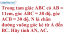 Bài 57 trang 114 SBT toán 9 tập 1